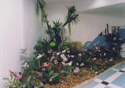 výstava Orchidgarden
